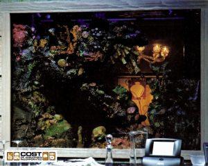 Aquarium Gallery 17