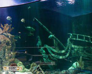 Aquarium Gallery 7a