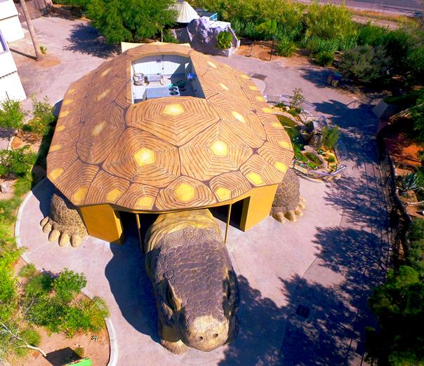 El Paso Zoo Reptile