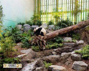 Calgary Zoo Panda Passage
