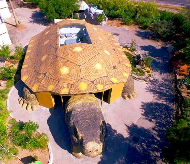 El Paso Zoo Reptile 1