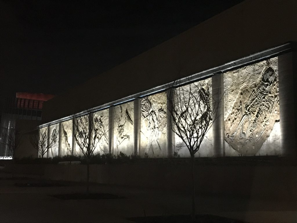 ICR Fossil Wall At Night (2019 02 08)