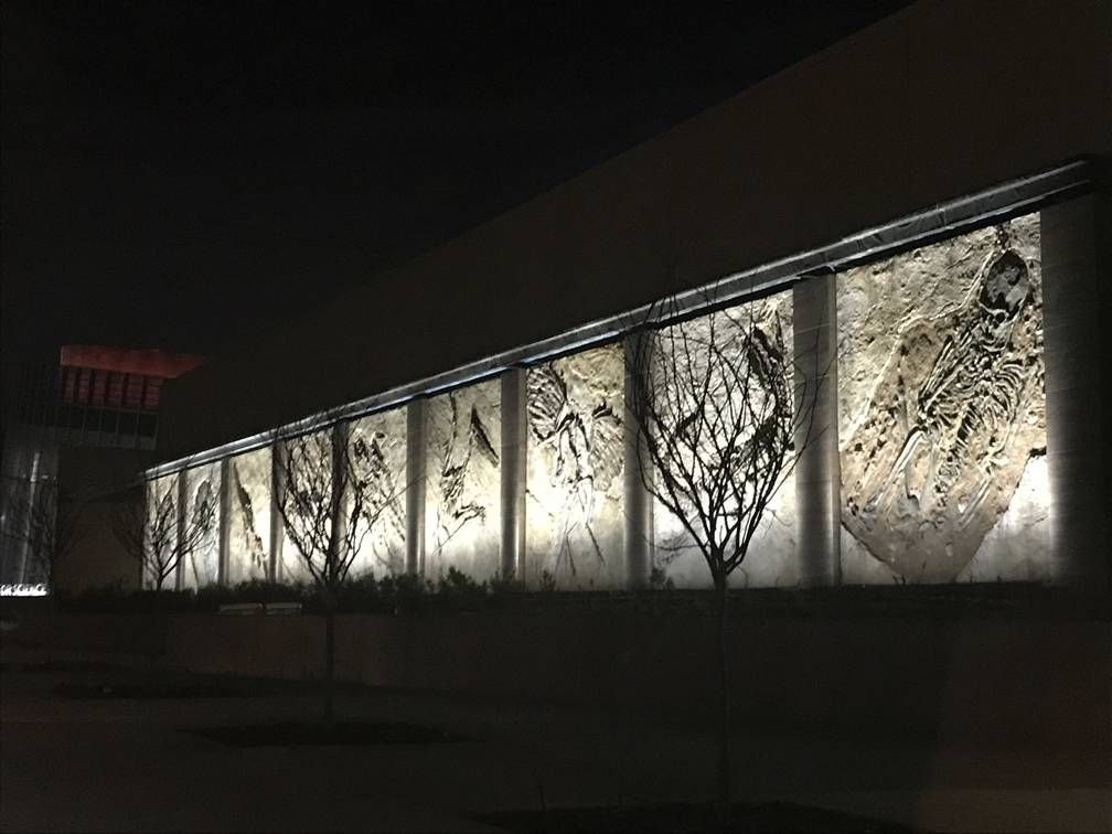 Exterior GFRC Fossil Panels At The ICR Discovery Center