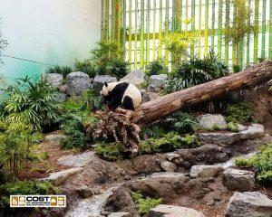 Zoo 530 1